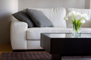 Furniture and Upholstery Cleaning Olympia WA